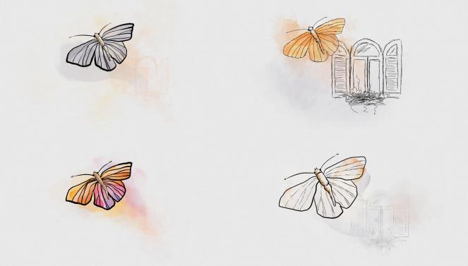 Schmetterling Vinzenzgruppe Animation